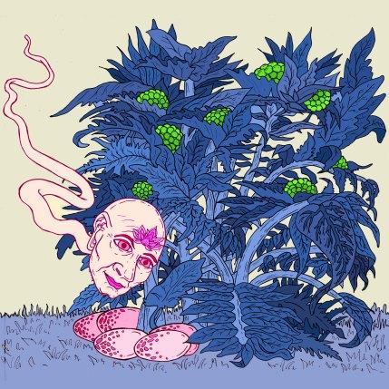 snake bush SQUARE 1 BLUE pink snake RICH